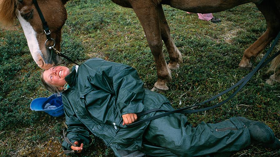 Hör gärna av dig till oss på Fjällhästen om det är något du undrar över.</br>Foto: Staffan Widstrand