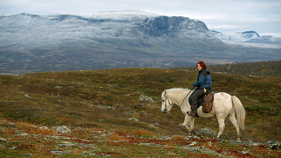 Anna-Marja Kaddik is one of the reindeer keepers we sometimes meet on the mountain and here she's seen in the clear autumn air on the mountain moore by Småfjällen. Photo: Staffan Widstrand